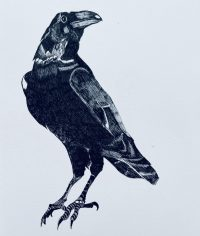 Construction of a Crow